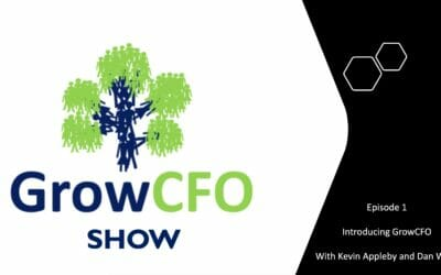 #1 Introducing The GrowCFO Show