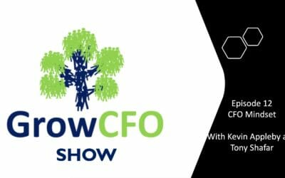 #12 CFO Mindset With Tony Shafar