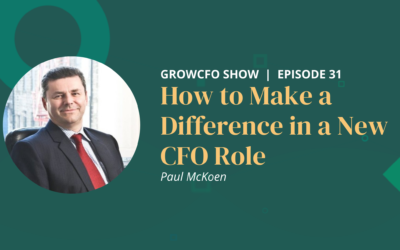 #31 How to Make a Difference in a New CFO Role